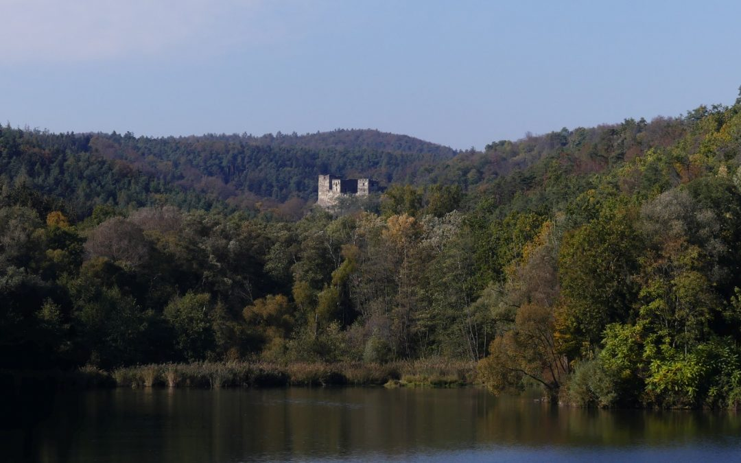 "Heute ""entdeckt"": Die Burgruine Kronsegg"