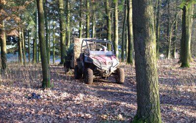 Pflichttermin im Advent: Der Christbaumerlebniswald bei Karlstetten