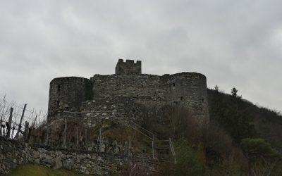 Winterwanderung zur Ruine Hinterhaus