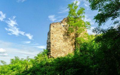 Morgenwanderung zur Schonenburg