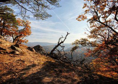 Blick vom Toten Berg bei Rossatzbach