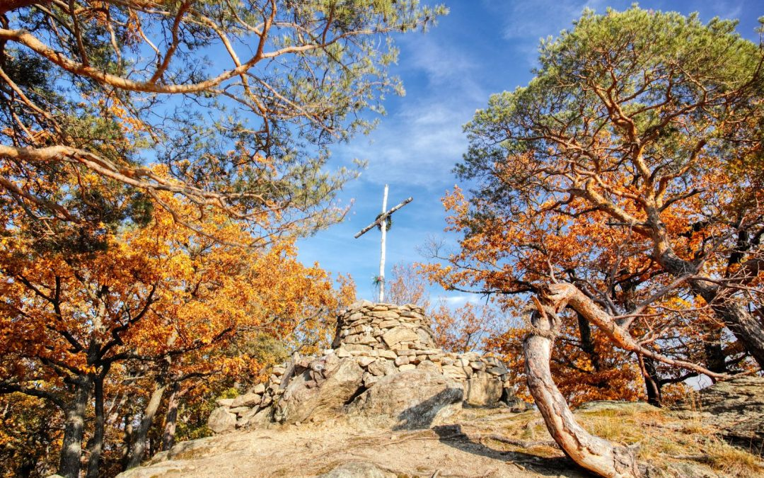 """Lebendige Herbstfarben auf dem """"Toten Berg"""" bei Rossatzbach"""