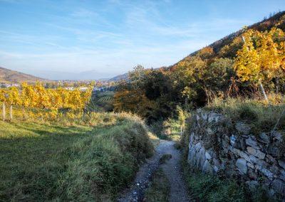 Welterbesteig bei Rossatzbach