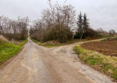 """""""tut gut"""" Wanderung Grafenegg - Route 4: Zum fünfeckigen Stein"""