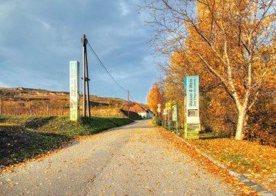 Beginn Lindobelgasse Rohrendorf