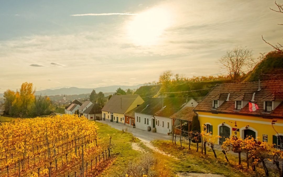 Wanderung durch Österreichs längste Kellergasse
