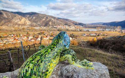 Aussichtsreiche Wanderung zur Smaragdeidechse