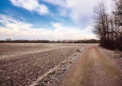 """tut gut"" Wanderweg Grafenegg - Route 2"