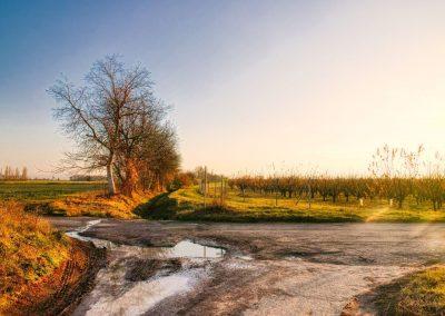 """""""tut gut"""" Wanderweg Fels am Wagram - Route 2"""