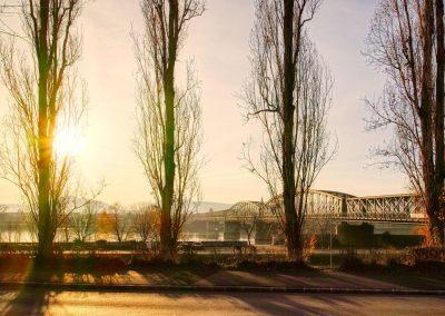 Blick zur Mauterner Brücke