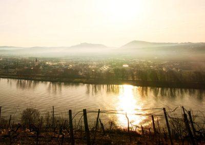 Blick vom Pfaffenbergweg Richtung Mautern