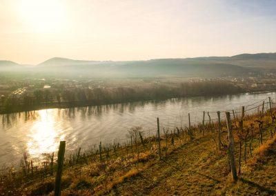Blick vom Pfaffenbergweg Richtung Hundsheim