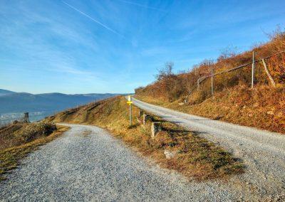 Pfaffenbergweg