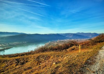 Blick vom Pfaffenbergweg Richtung Loiben