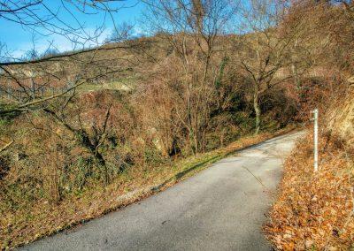 Abzweigung Richtung Rothenhof