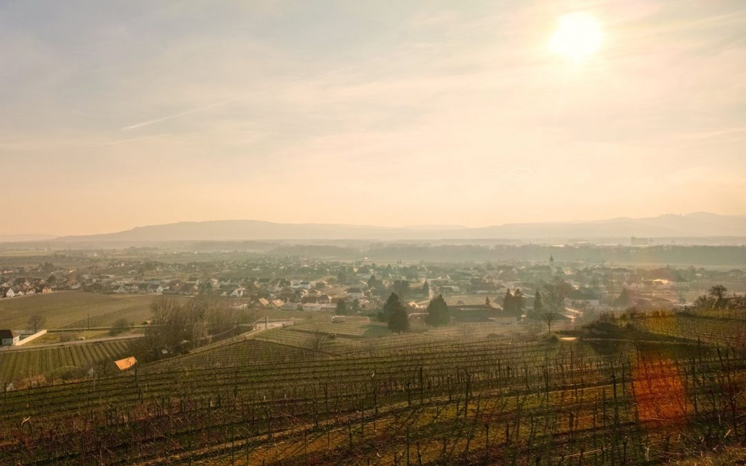 """tut gut"" Wanderweg Rohrendorf – Route 1"