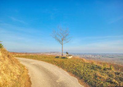 """""""tut gut"""" Wanderweg Rohrendorf bei Krems - Route 1"""