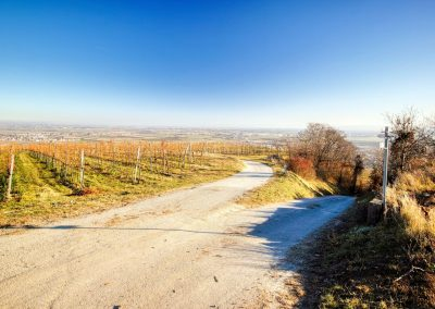 """tut gut"" Wanderweg Rohrendorf - Route 2"
