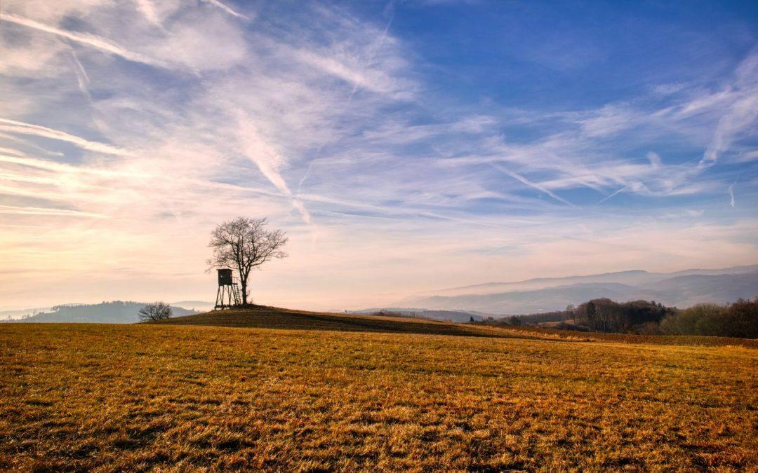 """Tut gut"" Wanderweg Gerolding – Route 1: Kleiner Geroldinger Rundwanderweg ""Vogel"""
