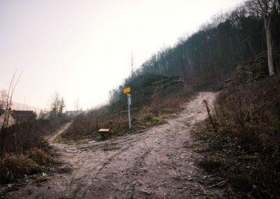 Weitwanderweg Kremstal-Donau 03