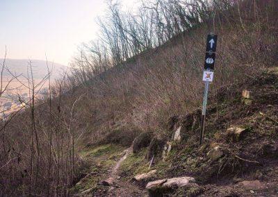 Trailwerk Wachau