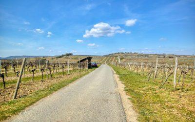 Kremser Rieden- und Wanderkarte – Wanderung 12: Rundwanderweg Kremser Goldberg