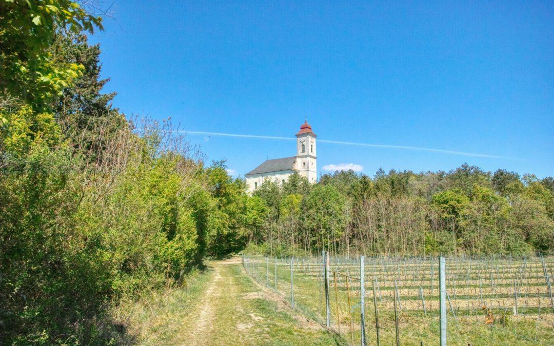 Kremser Rieden- und Wanderkarte – Wanderung 22: Weinriedenwanderung Hollenburg