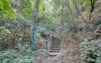 Die Kremser Vier-Steige-Runde: Maximale Anstrengung in kurzer Zeit