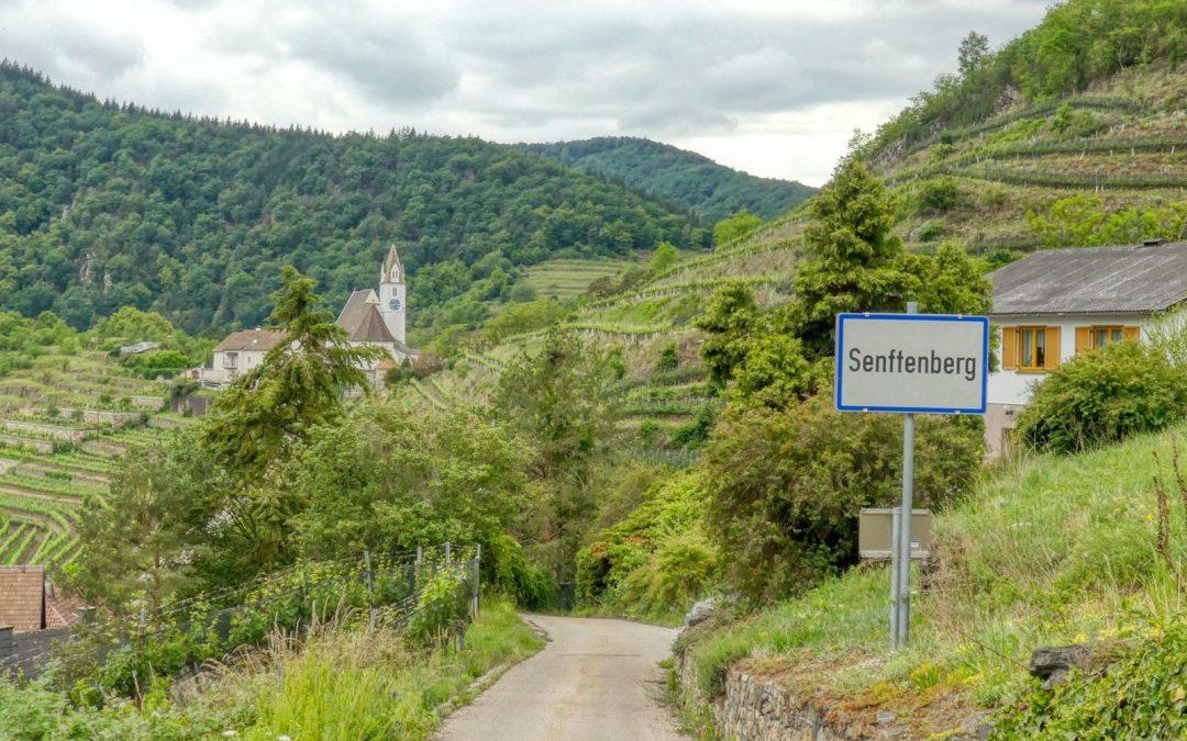 Rundwanderung Senftenberg – Aussichtsturm – Motocross-Strecke